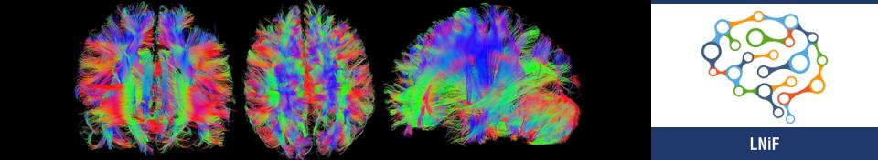 Neuroimaging Labs (LNiF)