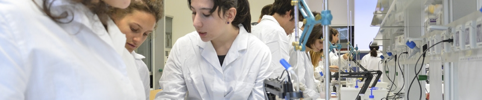 Master in Cellular and Molecular Biotechnology – CMB