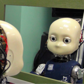 robot iCub in front of the mirror