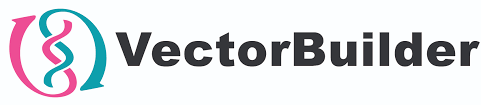 Vector Builder GmbH